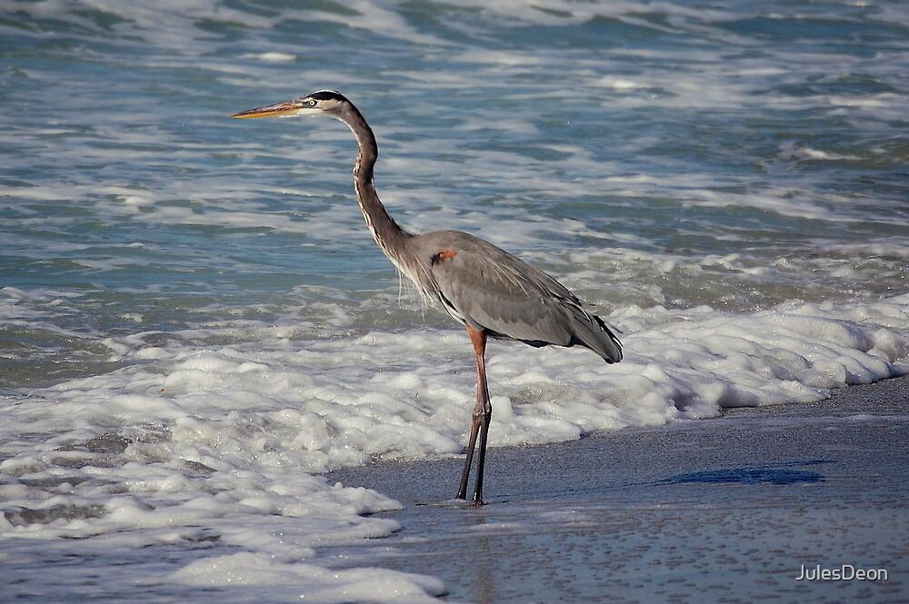 Sand Key Florida by JulesDeon