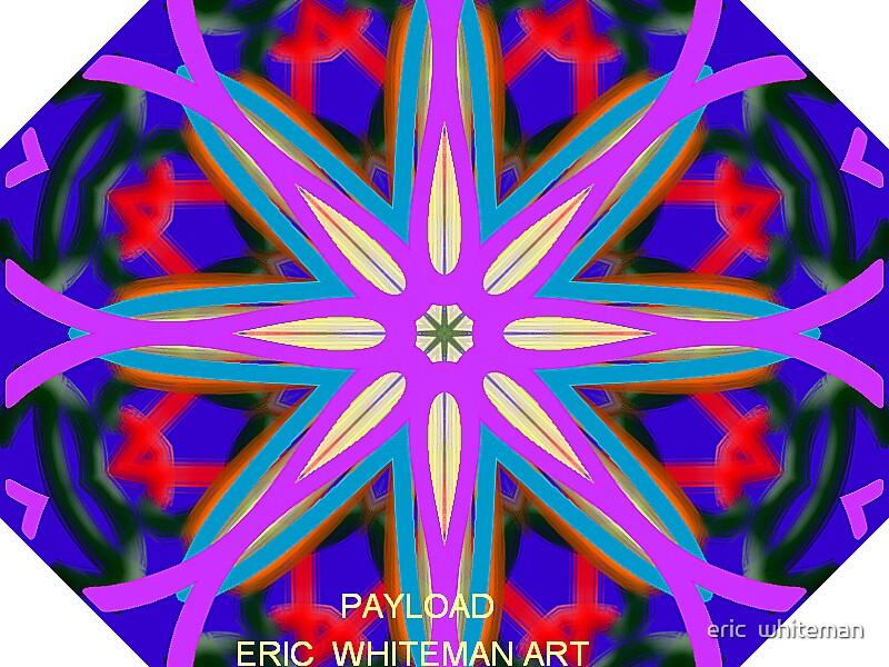 ( PAYLOAD )  ERIC WHITEMAN ART by eric  whiteman