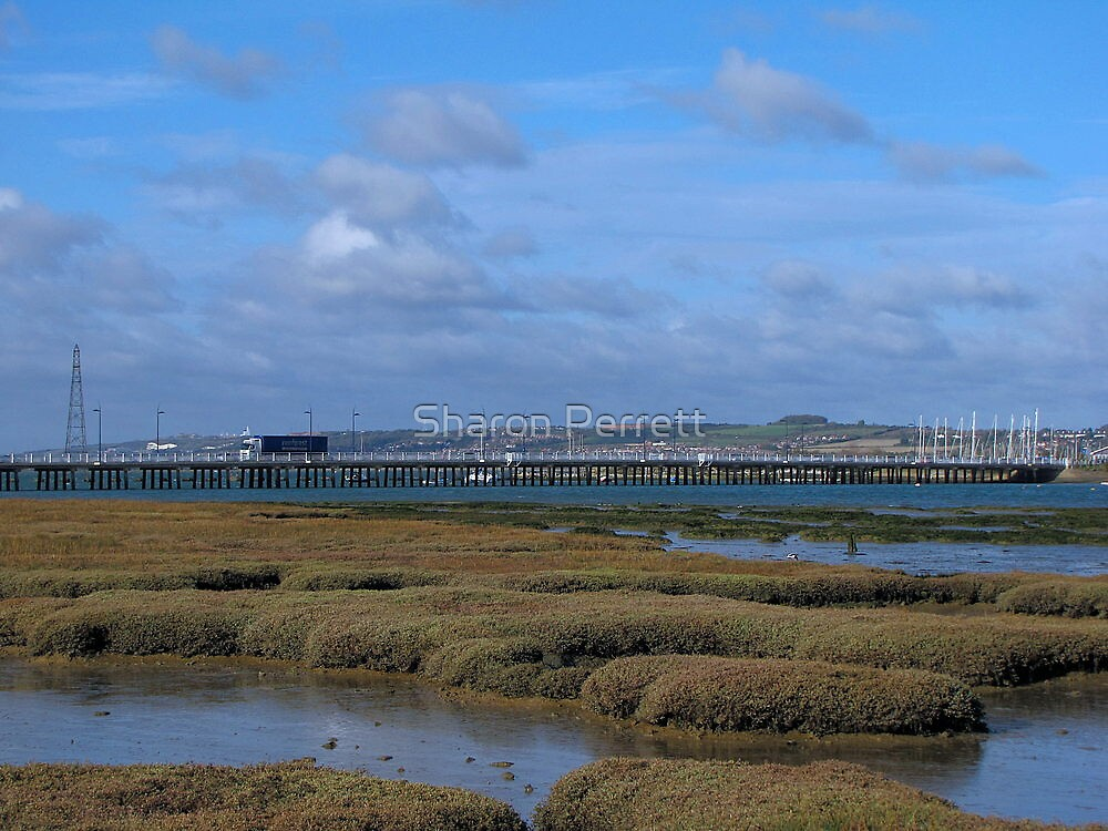 Langstone Harbour 02 by Sharon Perrett