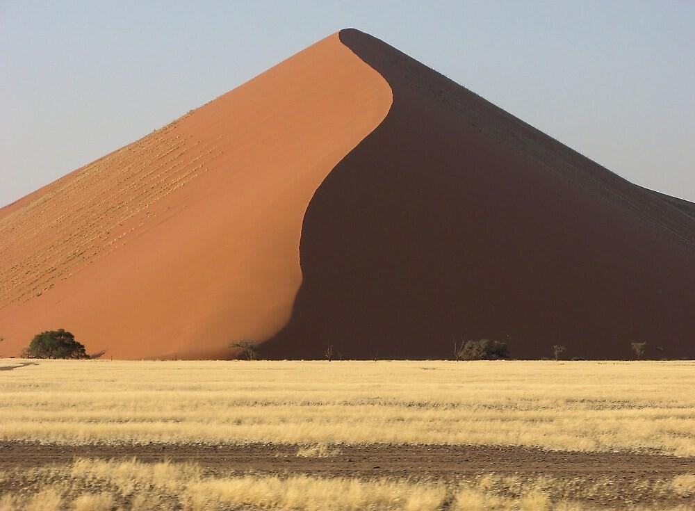Sossusvlei, Namibia by DianaC