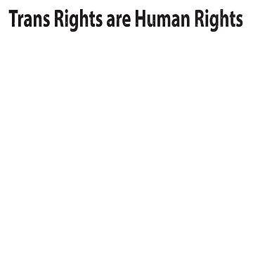Trans Rights are Human Rights Shirt by RithaMatch