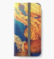 Photographs animal jellyfish iPhone Wallet/Case/Skin