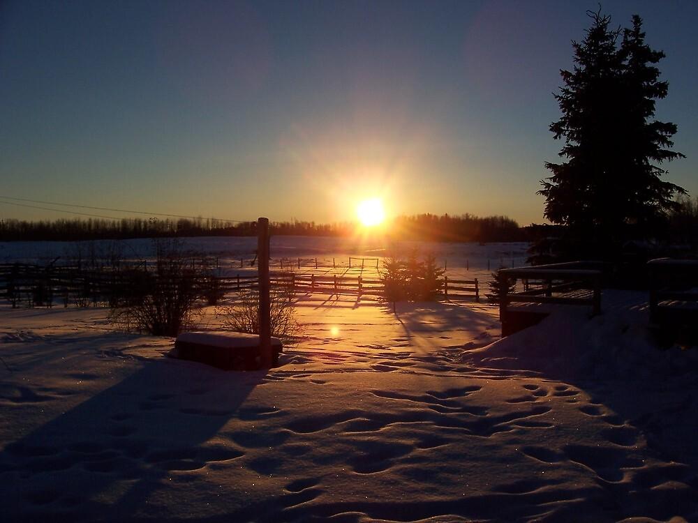 Alberta sunrise by Levi Moodie
