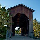 1925 Chambers Railroad Bridge by Susan Vinson