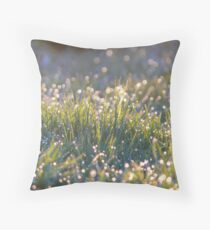 capture the mist Throw Pillow