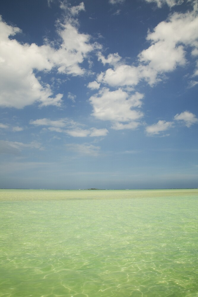 Sandbar View by ashleemeyer