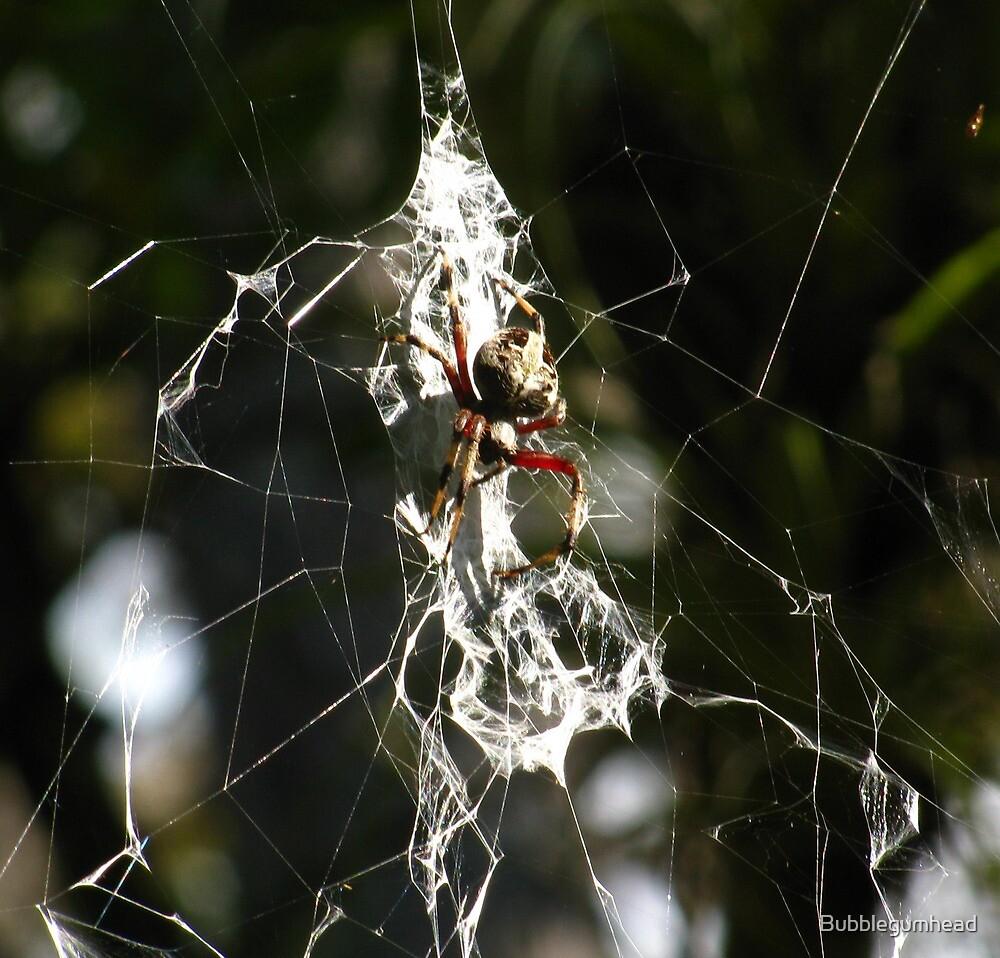 Arachnid by Bubblegumhead