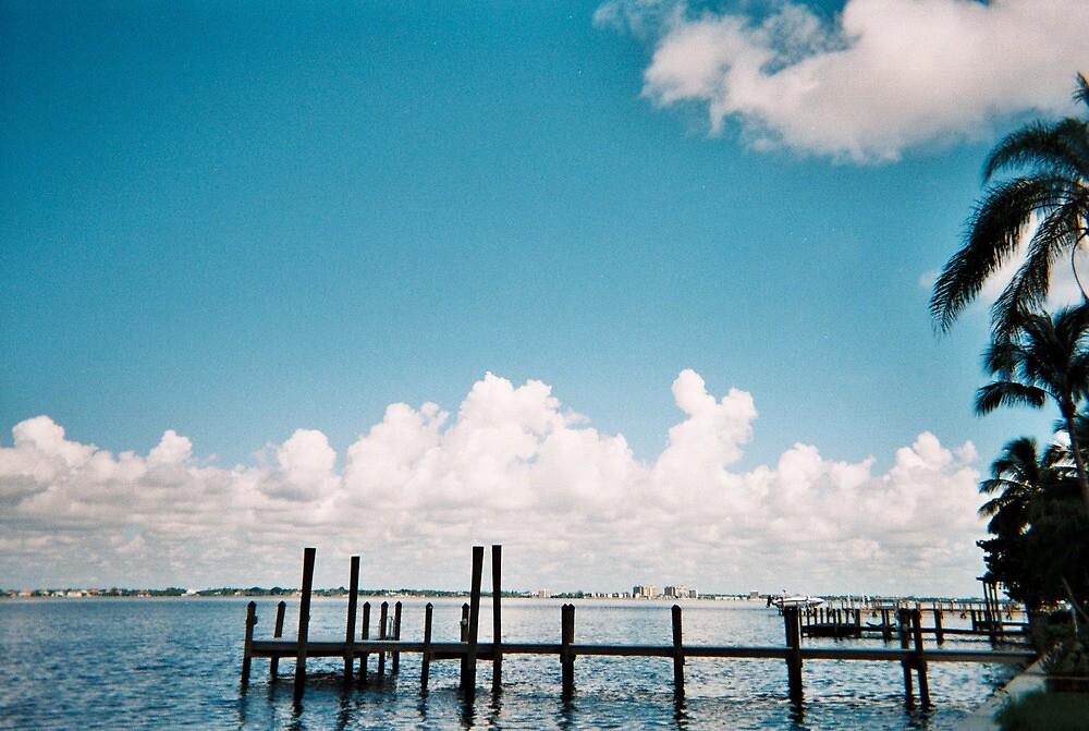 SCENERY IN FT. MYERS, FLORIDA by MsLiz