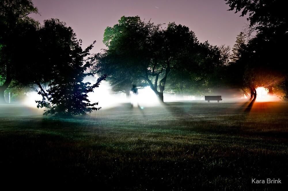 into the mist 2 by Kara Brink