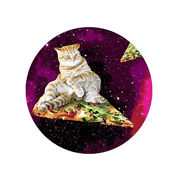 Space Cat Flying In Pizza Cat Lover Funny Gift Shirt by allsortsmarket