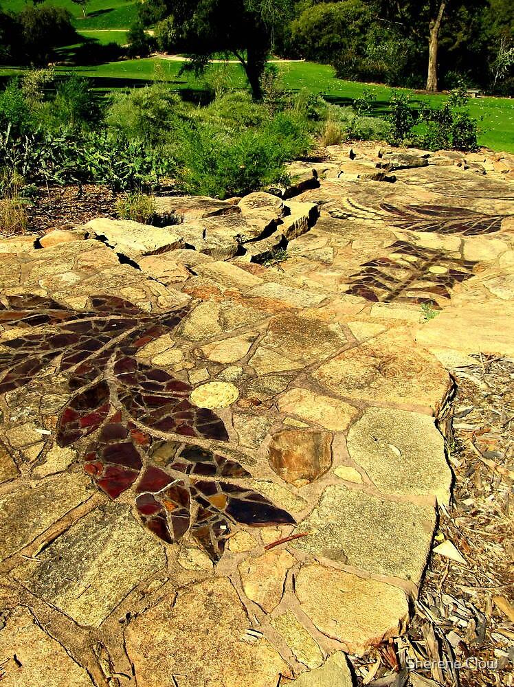 Acacia Steps - Kings Park, Perth by Sherene Clow