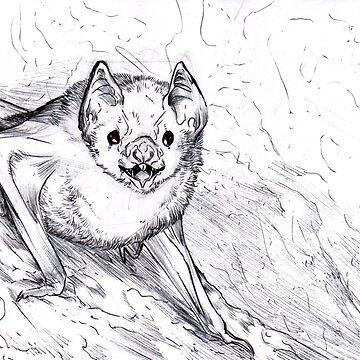 Inktober2018 - Bat by Furiarossa