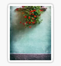 Geraniums on a wall Sticker
