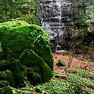 """Hidden Falls in the Valley"" by Bradley Shawn  Rabon"