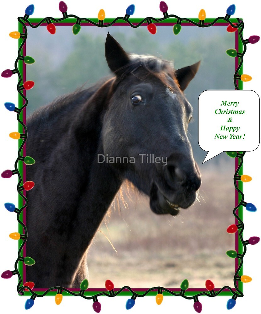 Merry Christmas by Dianna Tilley
