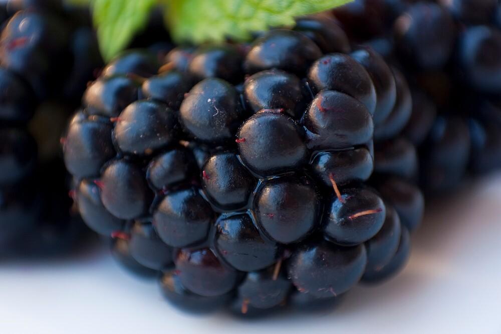 Blackberry by sanyi
