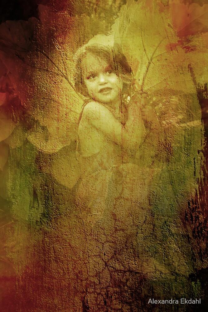 The old fairy by Alexandra Ekdahl