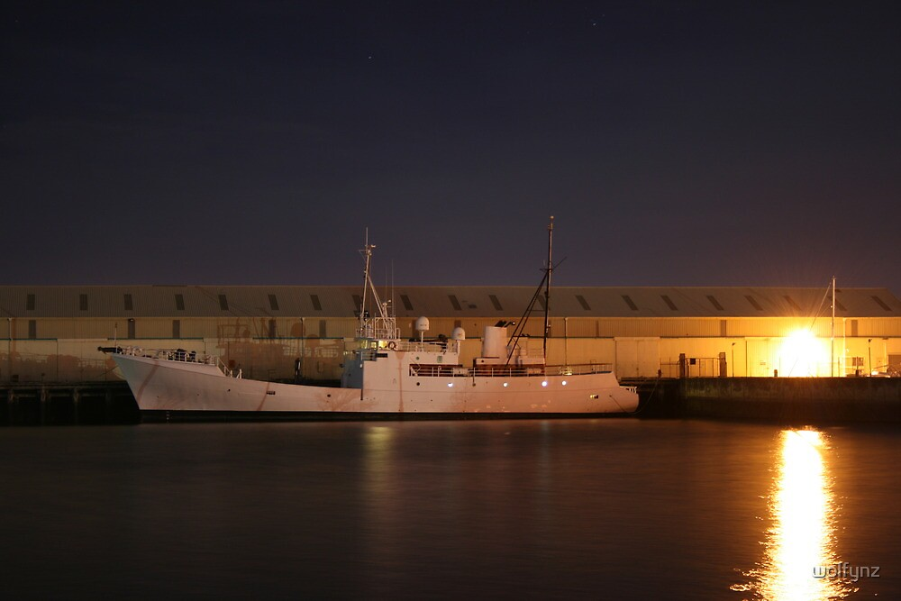 Night Trawler - Otago Harbour by wolfynz