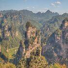 Pinnacles of Zhangjiajie by Michael Matthews