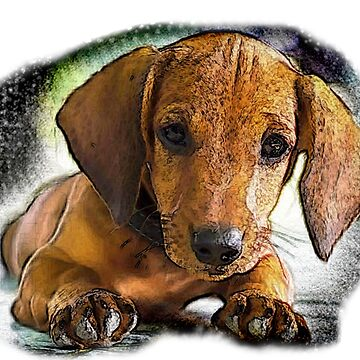 DOG_1 by Rockwell47