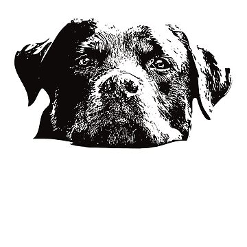 Rottweiler Face Design - A Rottie Christmas Gift by DoggyStyles
