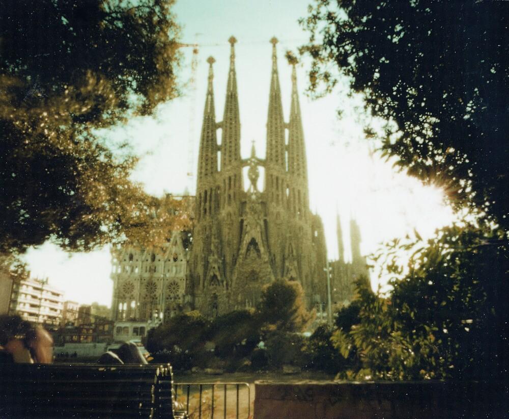 Sagrada Familia, Pin hole image on polaroid by violetstar
