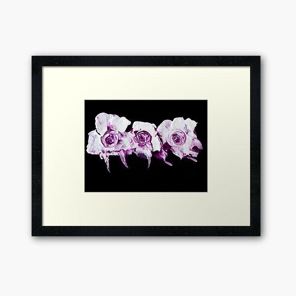 roses are ... purple Framed Art Print