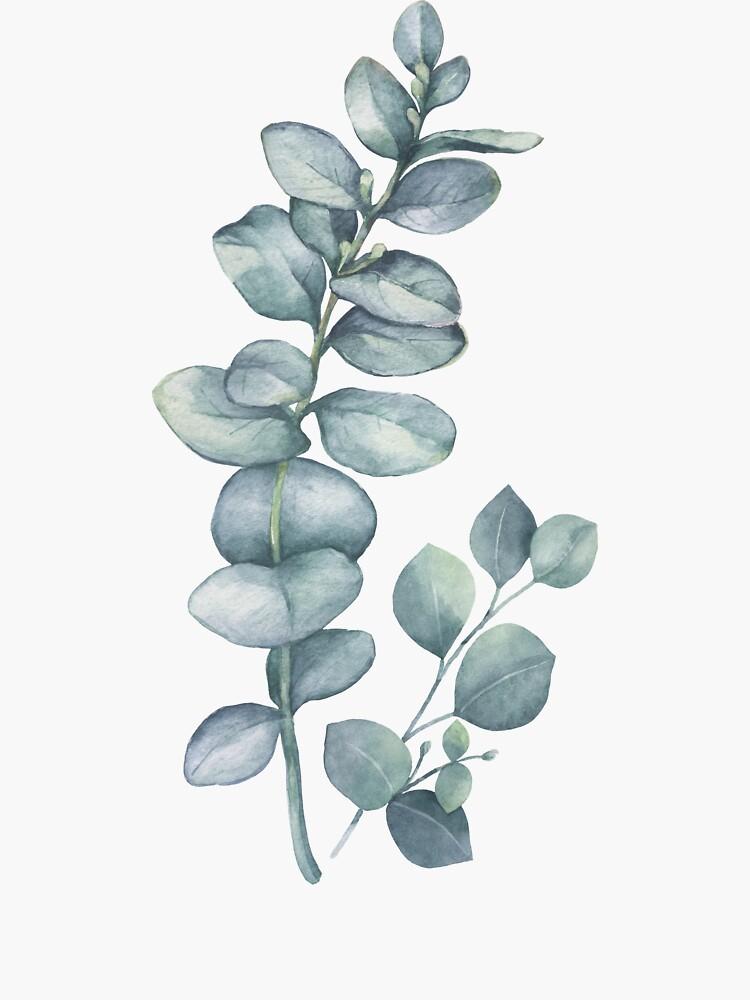 Eucalyptus Twig by LotusPrintShop