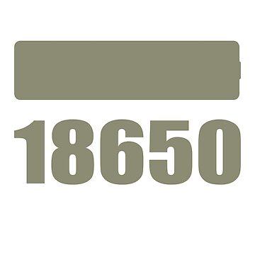 18650 Vape accu by 2vape
