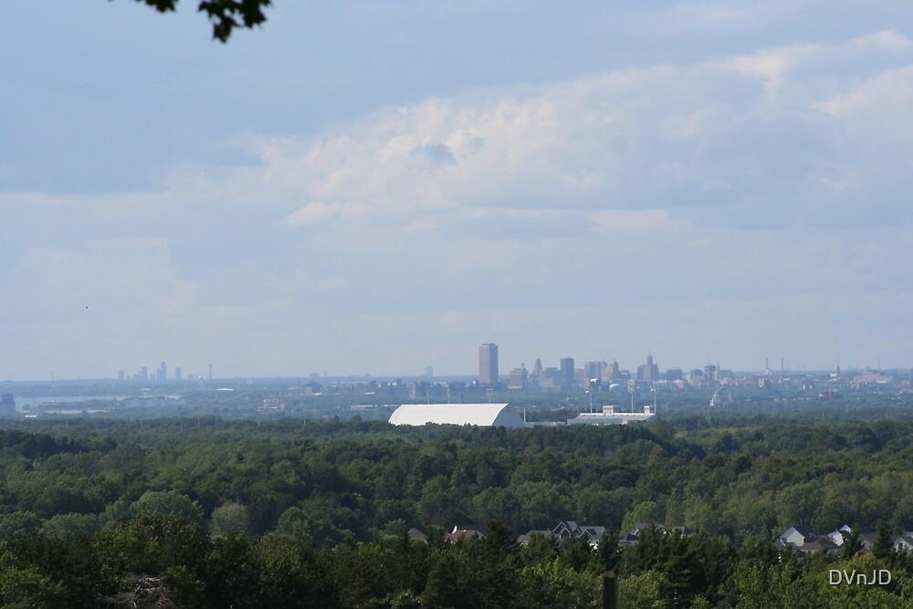 The Ralph, City of Buffalo and Niagara Falls Canada by DVnJD