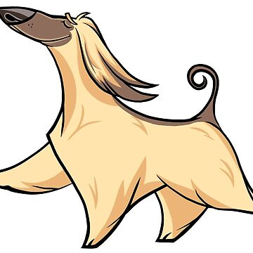 Afghan Hound I by waldogs