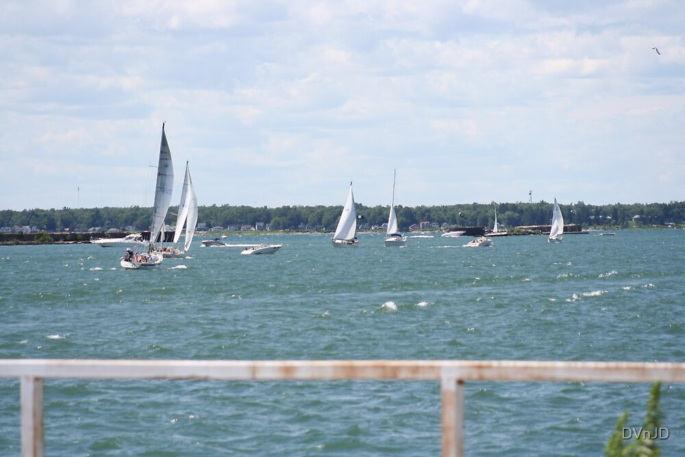 Busy Summer Day on Lake Erie by DVnJD