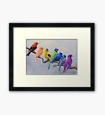 Birds of all Colors Framed Print