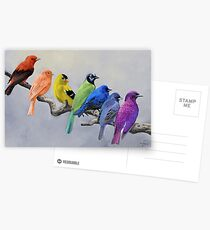 Birds of all Colors Postcards
