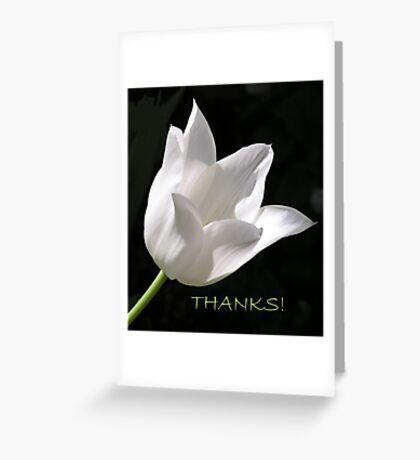 White Tulip Thank You Card Greeting Card