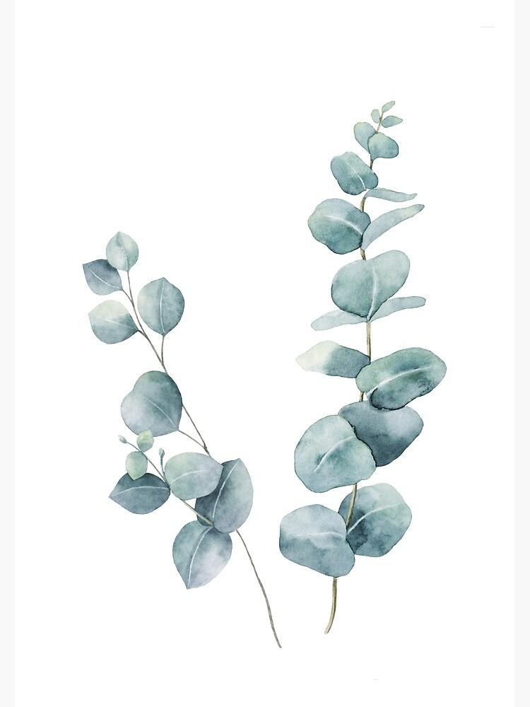 Eucalyptus Leaves by LotusPrintShop