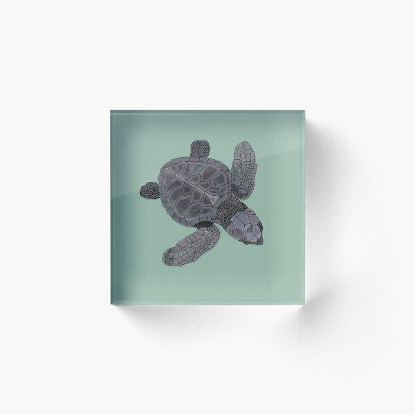 Baby turtle Acrylic Block
