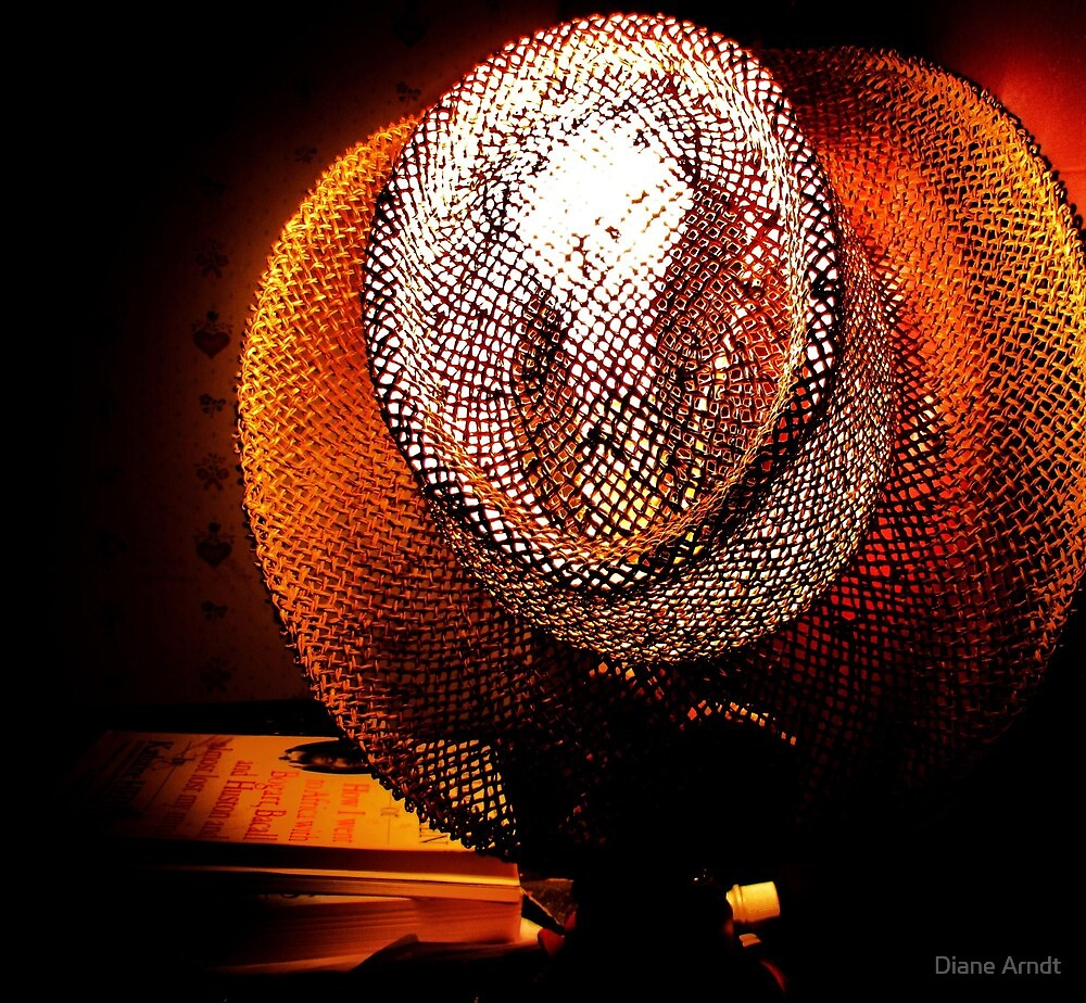 The Lamp Shade Series......#1 by Diane Arndt