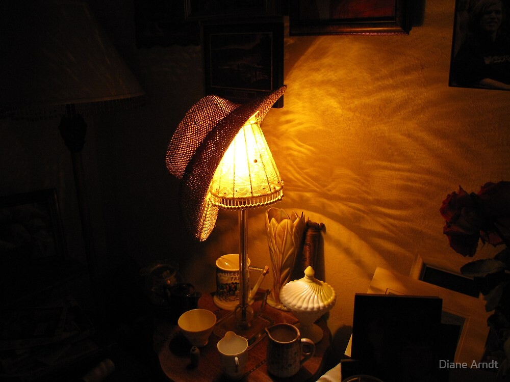 Lamp Shade Series #5..Rakish Angle by Diane Arndt