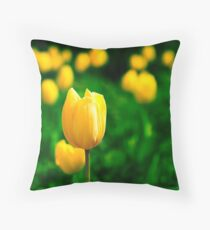 one for all Throw Pillow