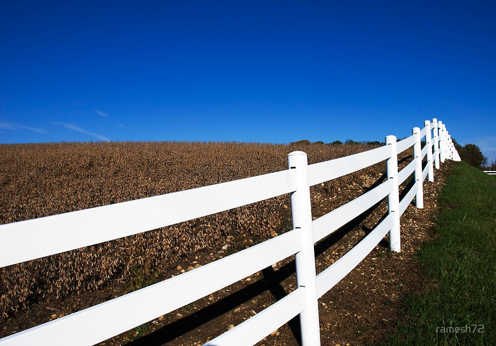 White Fence by ramesh72
