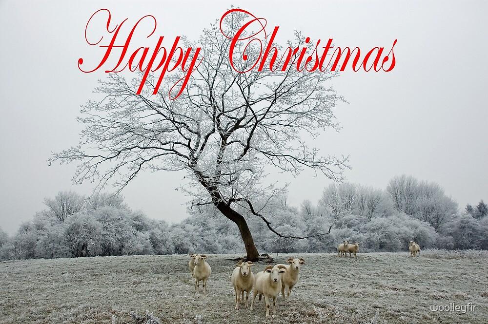 Christmas sheep by woolleyfir