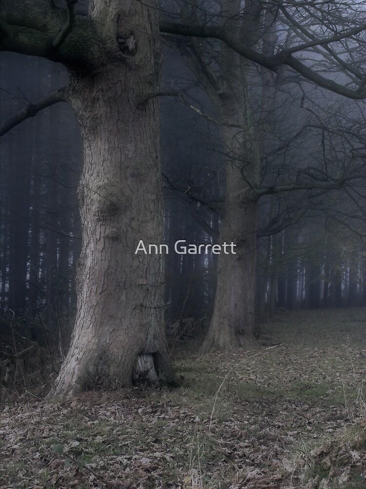 Dark Fog by Ann Garrett