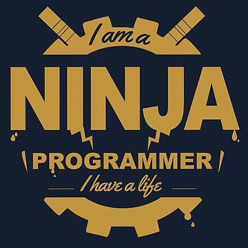 Programmer Ninja by mbiymbiy