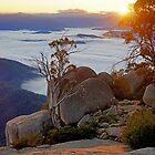 Mt Buffalo Sunrise by Harry Oldmeadow