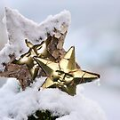 Snow Star by GolemAura