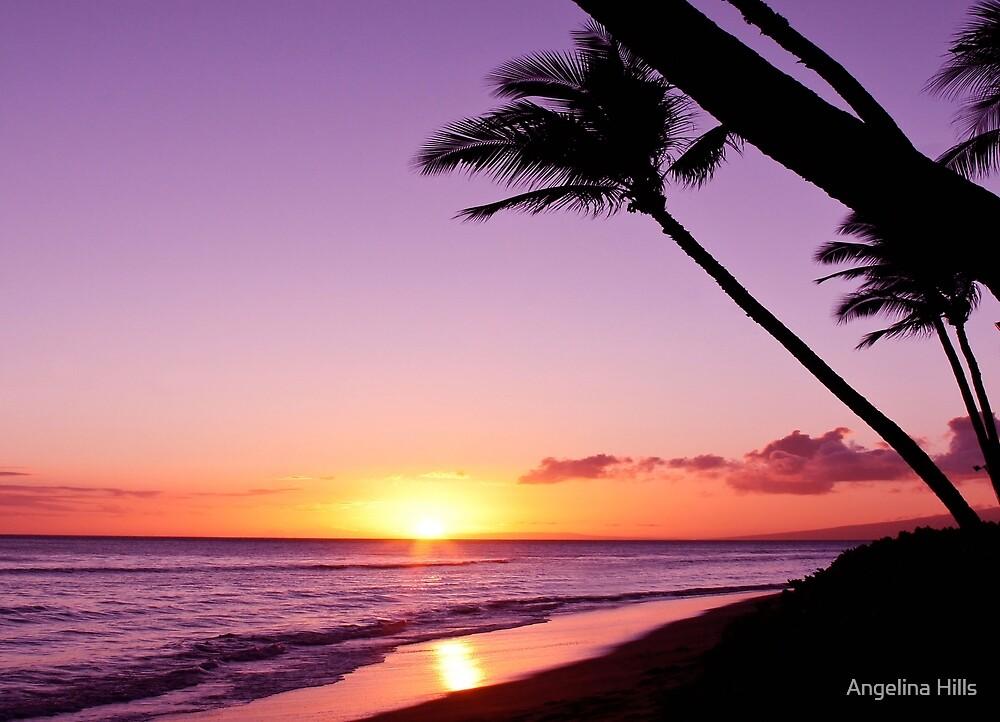 Purple Maui Sunset by Angelina Hills