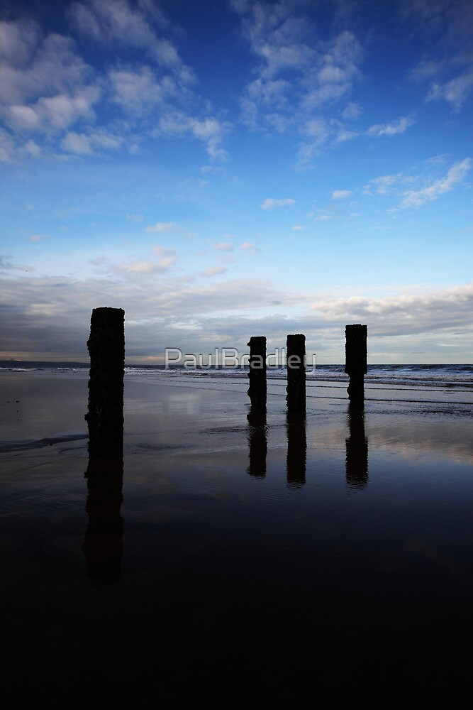 Totems by PaulBradley
