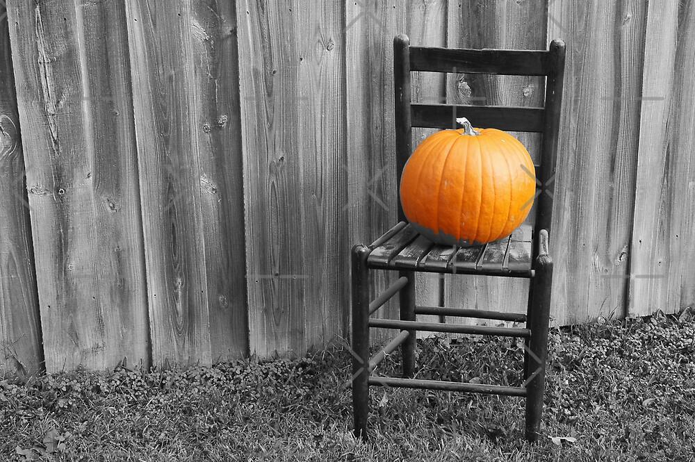 Pumpkin Chair by PhOtOgaljan