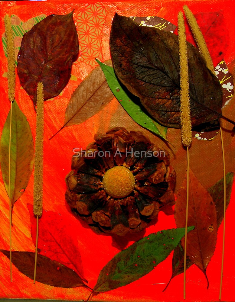 Nature's Textures by Sharon A. Henson